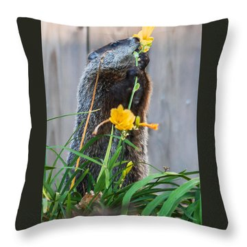 Groundhog And Flowers Throw Pillow by Edward Peterson