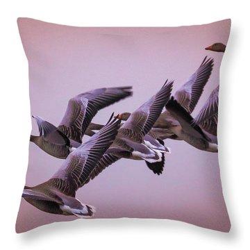 Throw Pillow featuring the photograph  Group Flight  by Franziskus Pfleghart