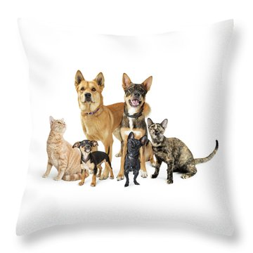 Group Of Cats And Dogs Looking Up On White Throw Pillow