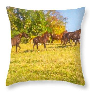 Group Of Morgan Horses Trotting Through Autumn Pasture. Throw Pillow