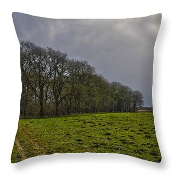 Group Of Trees Against A Dark Sky Throw Pillow by Frans Blok