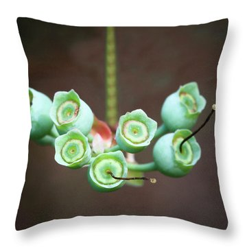 Growing Blueberries Throw Pillow