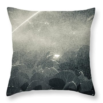 Growing Cabbage Throw Pillow by Scott Sawyer