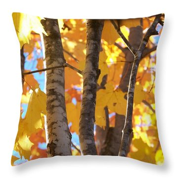 Growing Gold - Photograph Throw Pillow by Jackie Mueller-Jones