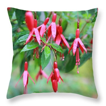 Throw Pillow featuring the photograph Growing In Red And Purple by Laddie Halupa