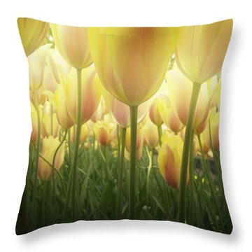 Growing  Tulips  Throw Pillow