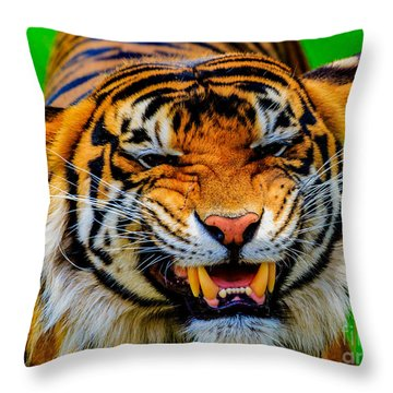 Growling Tiger Throw Pillow