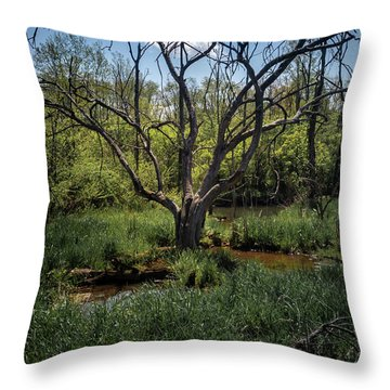 Growning From The Marsh Throw Pillow