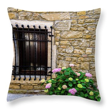 Groznjan Istrian Hill Town Stonework And Flowerpot - Istria, Croatia Throw Pillow