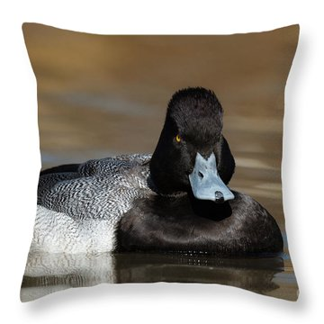 Grumpy Duck Throw Pillow