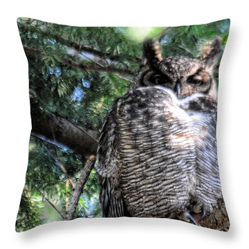 Grumpy Throw Pillow by Lawrence Christopher