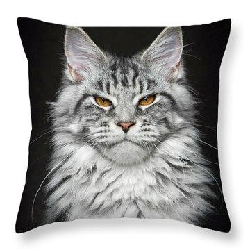 Throw Pillow featuring the photograph Grumpy Silver. by Robert Sijka