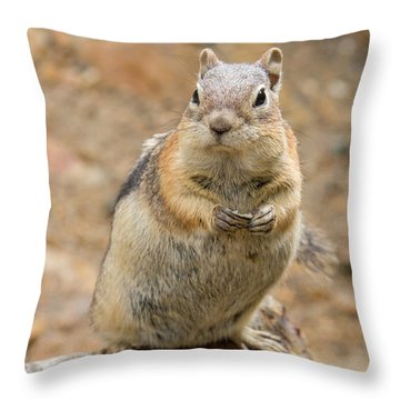 Grumpy Squirrel Throw Pillow