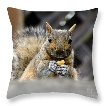 Grumpy Squirrel Throw Pillow
