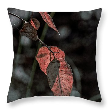 Throw Pillow featuring the photograph Grungy Leaves by Elaine Teague