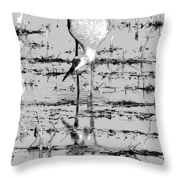 Grus Canadensis 2 Throw Pillow