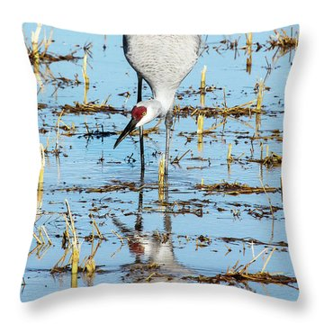 Grus Canadensis I Throw Pillow