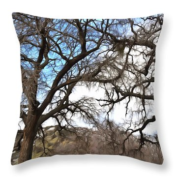 Throw Pillow featuring the photograph Guard Shack At Fort Tejon Lebec California by Floyd Snyder