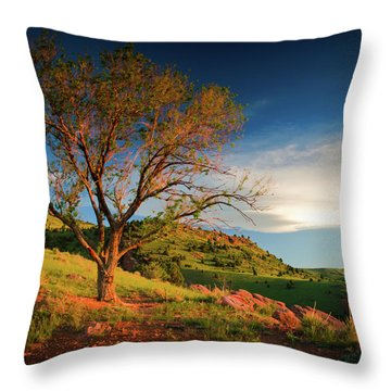 Throw Pillow featuring the photograph Guardian Of Light by John De Bord