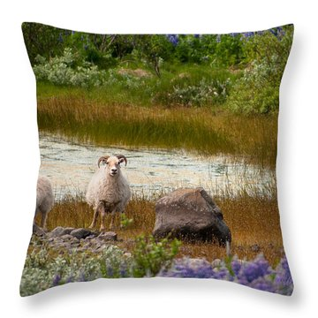 Guardian Throw Pillow by William Beuther