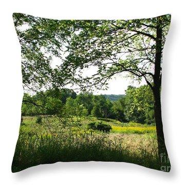 Beyound The Trees Throw Pillow