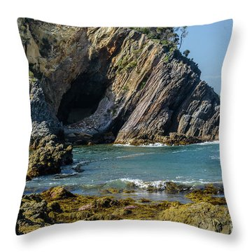 Throw Pillow featuring the photograph Guerilla Bay 4 by Werner Padarin