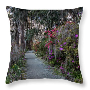 Guide Our Feet Into The Path Of Peace. Luke 1.79  Throw Pillow
