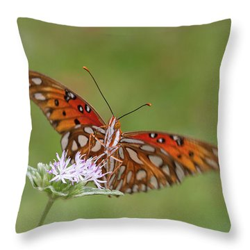 Gulf Fritillary On Elephantsfoot Throw Pillow