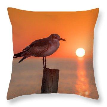Gull And Sunset Throw Pillow