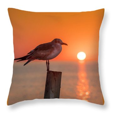 Gull And Sunset Throw Pillow