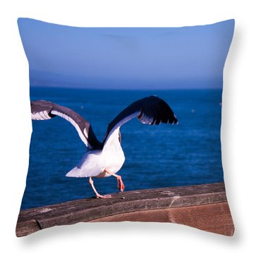 Gull Dance Throw Pillow