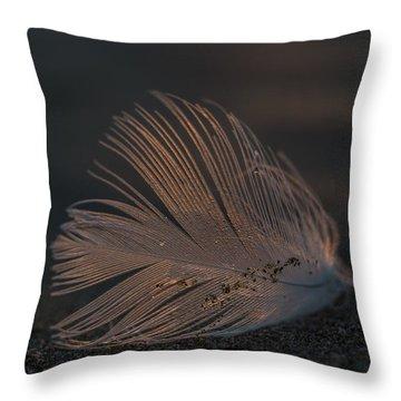 Gull Feather On A Beach Throw Pillow