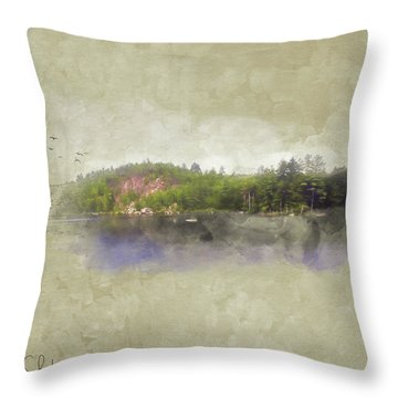 Gull Pond Throw Pillow