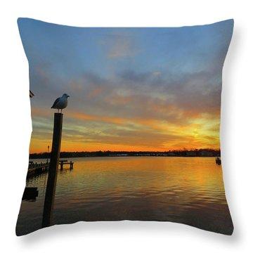Gull Sunset Throw Pillow