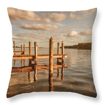 Gull Watching Throw Pillow by Phillip Burrow