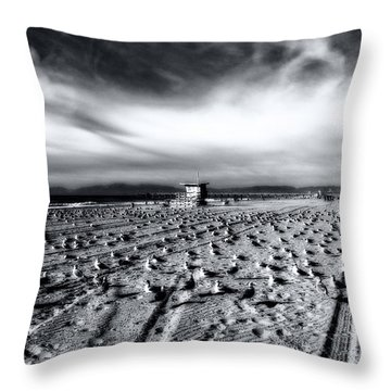 Throw Pillow featuring the photograph Gulls On Beach by Michael Hope