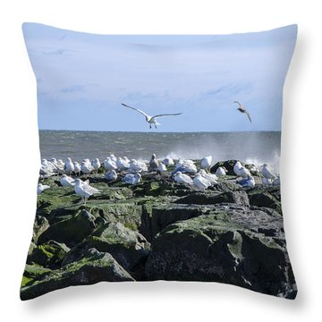 Gulls On Rock Jetty Throw Pillow