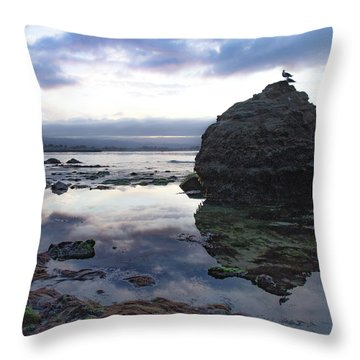 Throw Pillow featuring the photograph Gulls With Clouds by Lora Lee Chapman