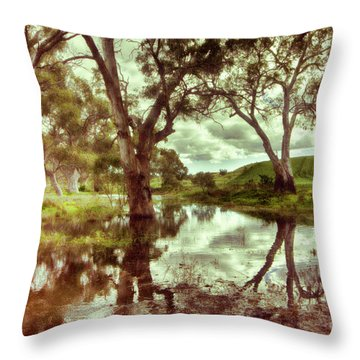 Throw Pillow featuring the photograph Gum Creek V2 by Douglas Barnard