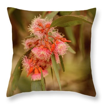 Throw Pillow featuring the photograph Gum Nuts 2 by Werner Padarin