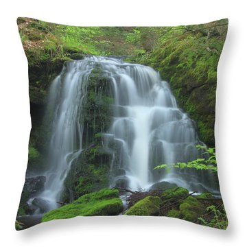 Gunn Brook Slip Dog Falls Mount Toby Throw Pillow by John Burk
