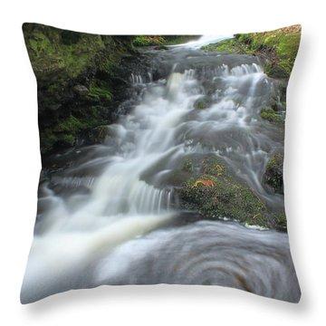Gunn Brook Vortex Mount Toby Throw Pillow by John Burk