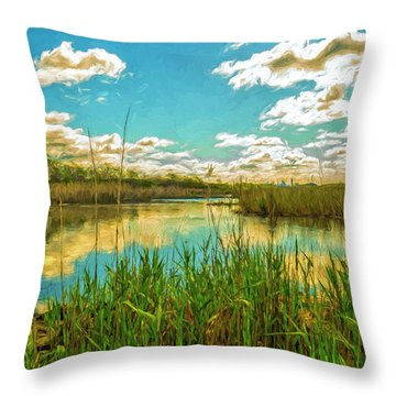 Gunnel Oval By Paint Throw Pillow