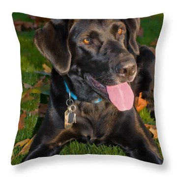 Gunner The Black Lab Throw Pillow