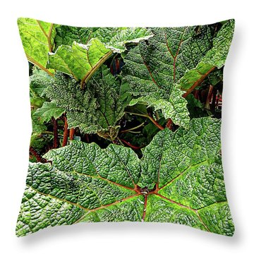 Gunnera Manicata Throw Pillow