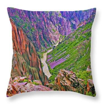 Gunnison River Throw Pillow