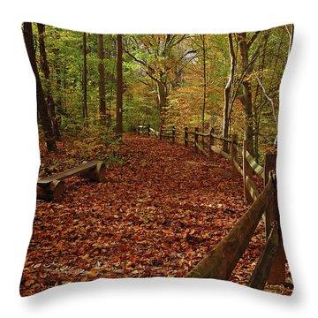 Gunpowder Falls Park Throw Pillow
