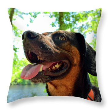 Gus On A Hike Throw Pillow