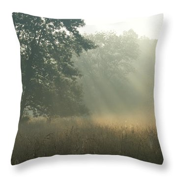 Guten Morgen Throw Pillow
