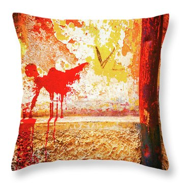Throw Pillow featuring the photograph Gutter And Decayed Wall by Silvia Ganora